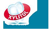 Xylitol.net