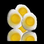 Paistetut munat